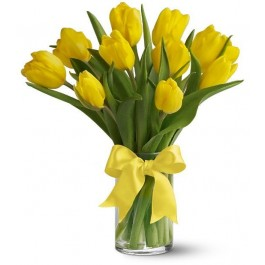 10 yellow tulips EB-288