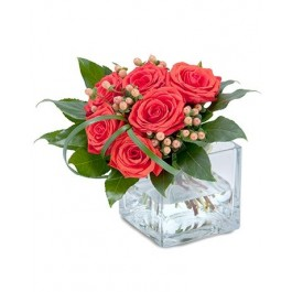 Mod Roses EB-249