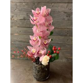 Pink beauty EB-486