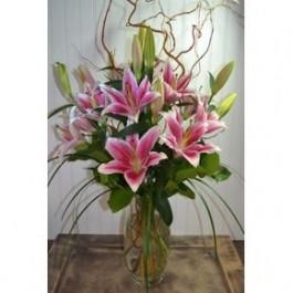Stargazer bouquet 8stems EB-487