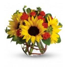Sunny Bouquet  EB-458