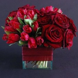 Velvet red bouquet EB-478