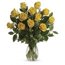 EB-502 Dz yellow roses
