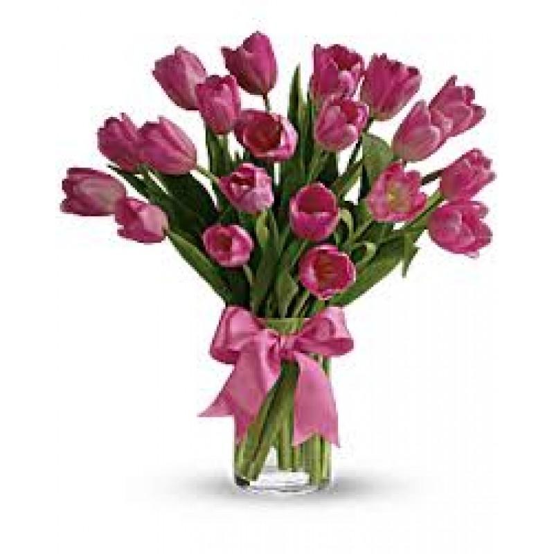 20 Pink tulips EB-290