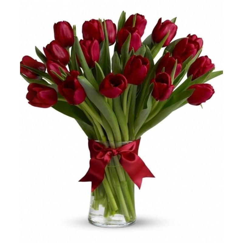 20  Tulips EB-583