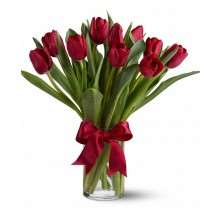 10 red tulips EB-287