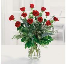 Dozen premium long stem red roses EB-71