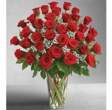 3 DZ Red Roses EB-236