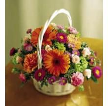Joyful Basket  EB-16