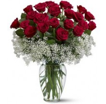 I adore you bouquet 2Dz premium long stem roses EB-589