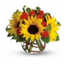 Sunny Bouquet  EB-458