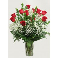 Dozen premium long stem red roses  EB-472