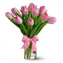 10 Pink tulips EB-285