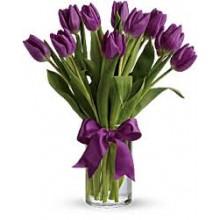 10 purple tulips EB-286