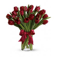 20 red tulips EB-292