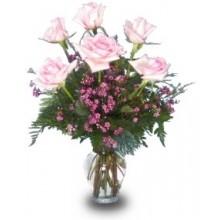6 light Pink Roses EB-238
