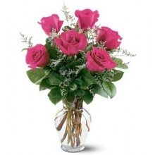 6 pink roses vased EB-587