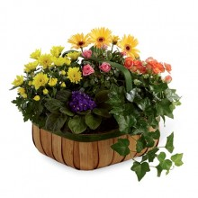 Blooming basket EB-514