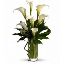 Calla Lily Bouquet  EB-409