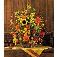 Fall Bloomings EB-150