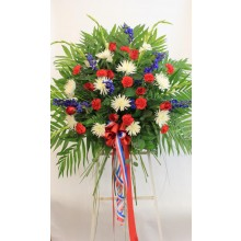 Patriotic Salute EB - 368