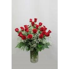 24 Red Rose EB-503