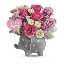 Hello Sweet Baby Pink EB-80